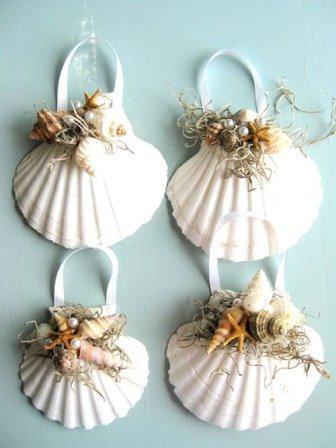 Морские ракушки. Фото